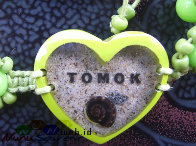 Resin Bening Tomok